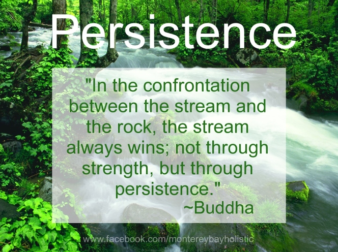 persistence2