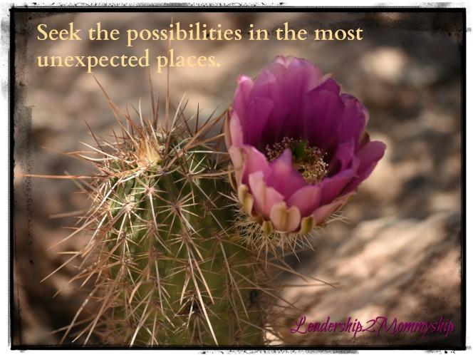 Seek the Possible